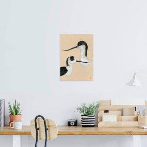 Avocette élégante – Échasse blanche