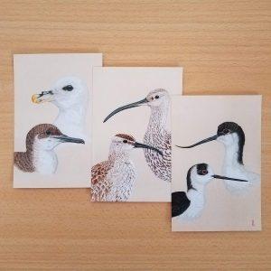 Lot 3 cartes postales + enveloppes